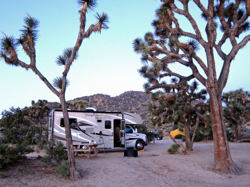 Campsite Black Rock Campground, Joshua Tree National Park USA
