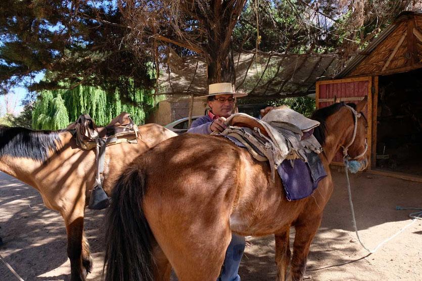 Reitstall Cabalgatas Altos De Cochiguaz Valle Elqui