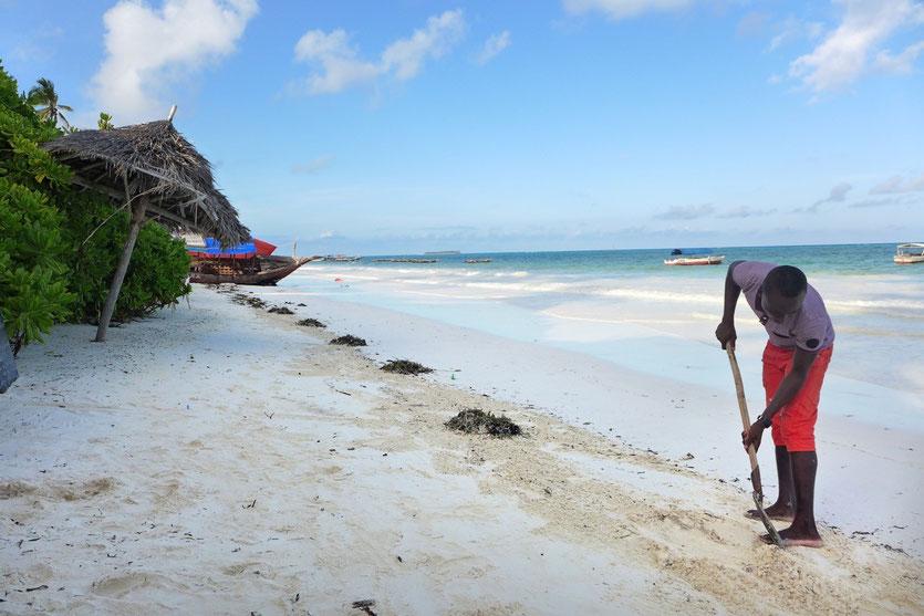 Matemwe Beach Sansibar, Zanzibar beach eastcoast