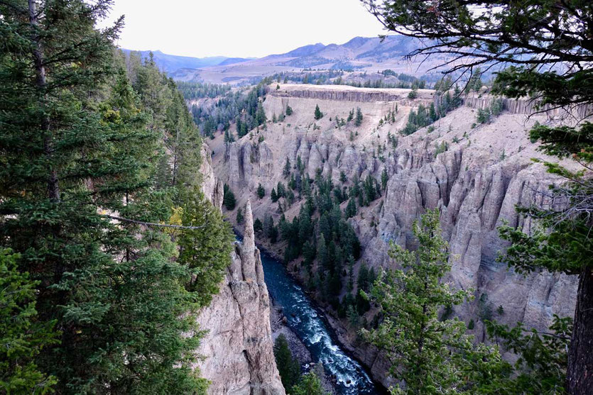 Basaltsäulen bei den Narrows im Yellowstone River Canyon
