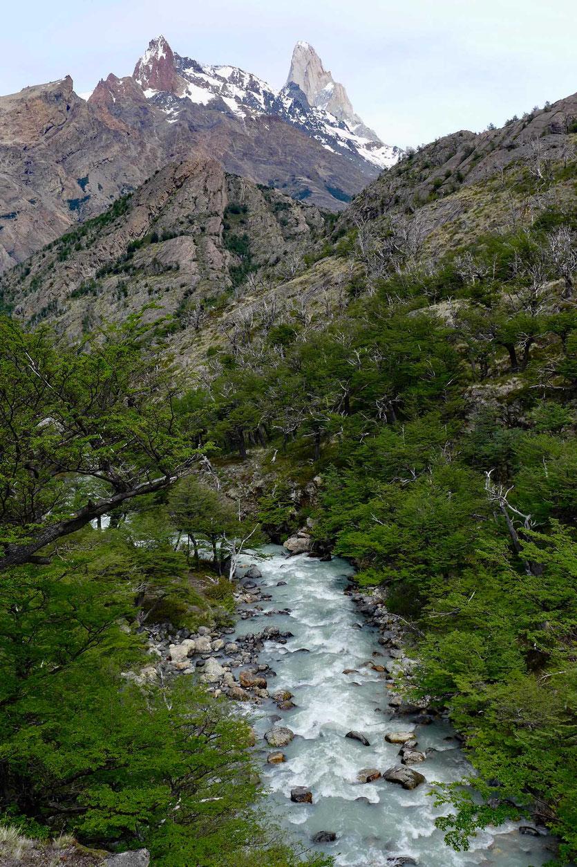 Rio Diablo im Naturreservat Los Huemules
