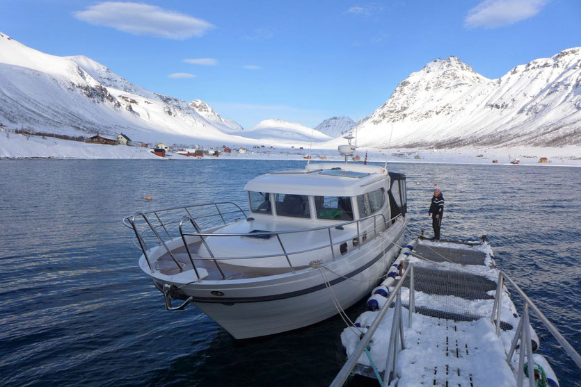 Lyngen Alps Norwegen Skitouren per Boot