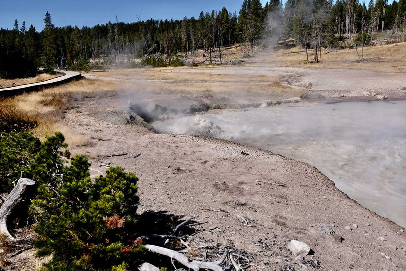 Schlammbecken Mud Vulcano Yellowstone Nationalpark