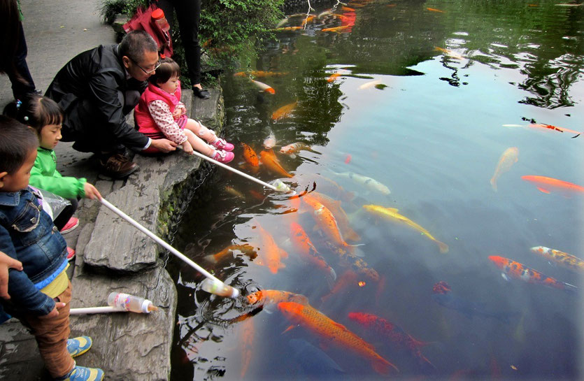 Renmin Park Chengdu, people's park chengdu