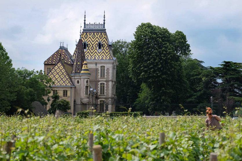 Chateau Chateau Corton C Burgund Côte D'Or