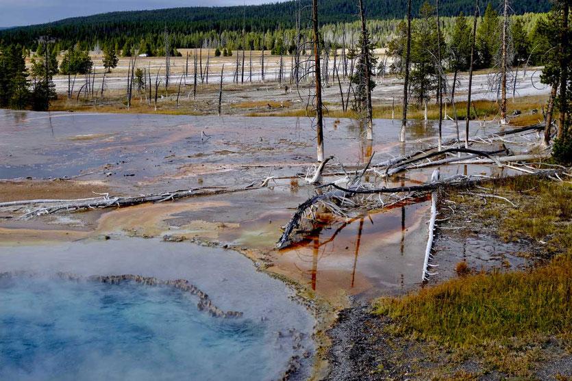 Bunte Pools am Firehole Lake Drive