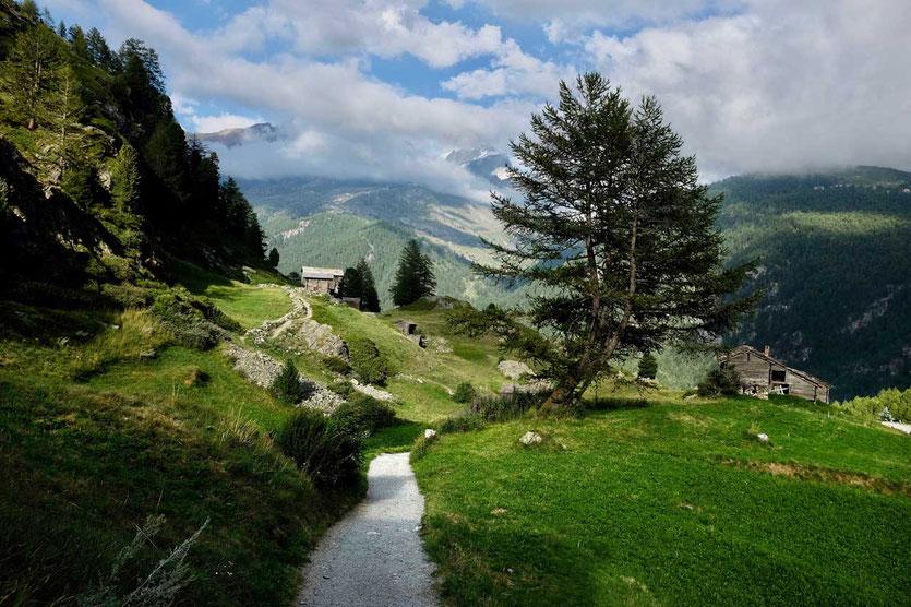 Weg von Zmutt Richtung Zermatt