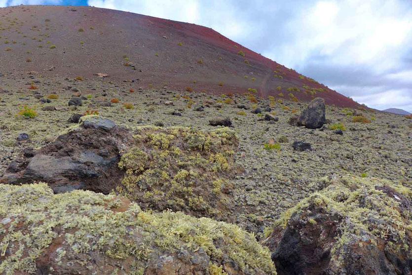 Vulkan Wanderung Caldera Colorada Lanzarote