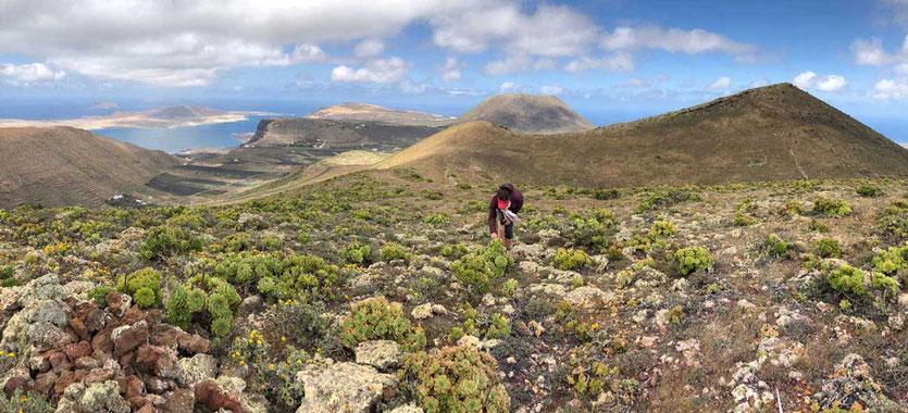 Los Helechos Vulkan Wanderung Lanzarote Mirador Aussichtsberg