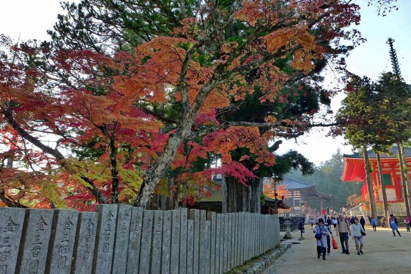 Japan Koyasan Highlight Danjo Garan Tempelkomplex Pagode Konpon Daito
