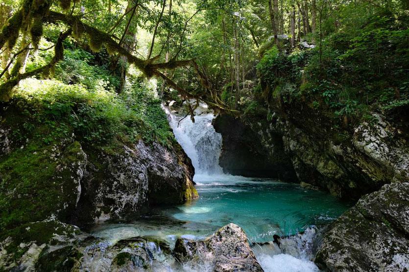 Šunik-Wasserhain (Šunikov vodni gaj)