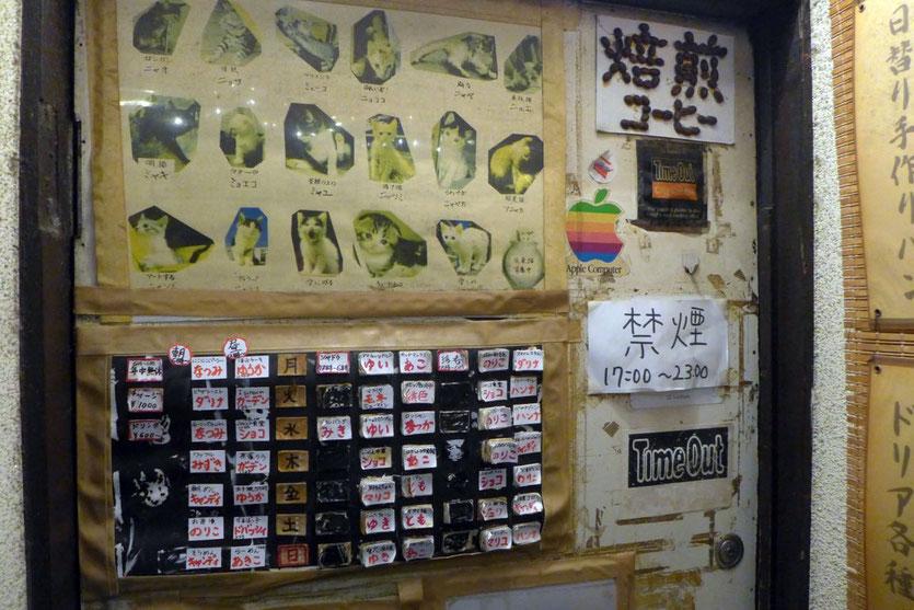 Tokio  Cat cafe Shibuya