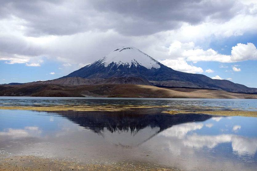 Volcán Parinacota im Chungara See, Lauca Nationalpark