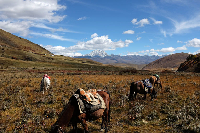 Horse Trek Tour 'Nomad Visit' in Tagong