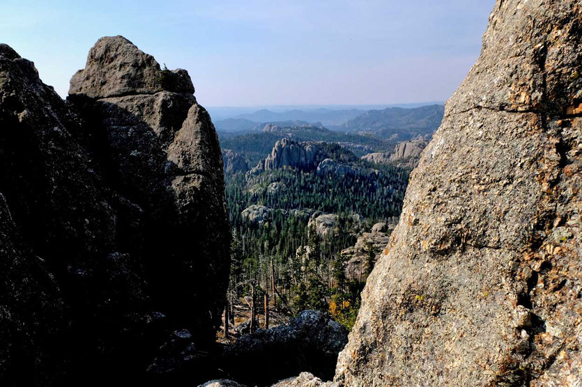 Black Hills Landschaft im Custer State Park South Dakota