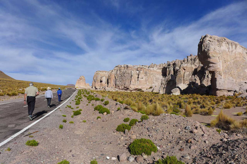 Steinwald 'Bosque de Piedras' Altiplano Chile
