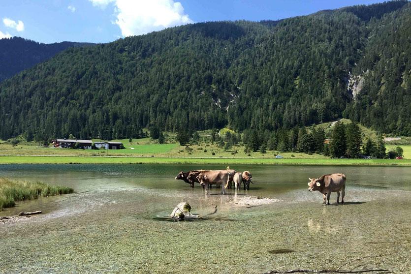 badesee Leogang Radtour Pillersee