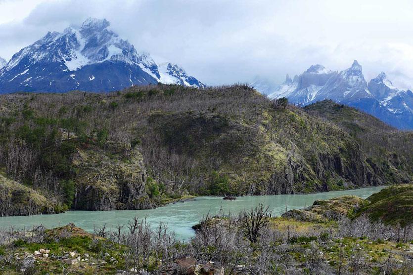 Rio Grey Torres del Paine