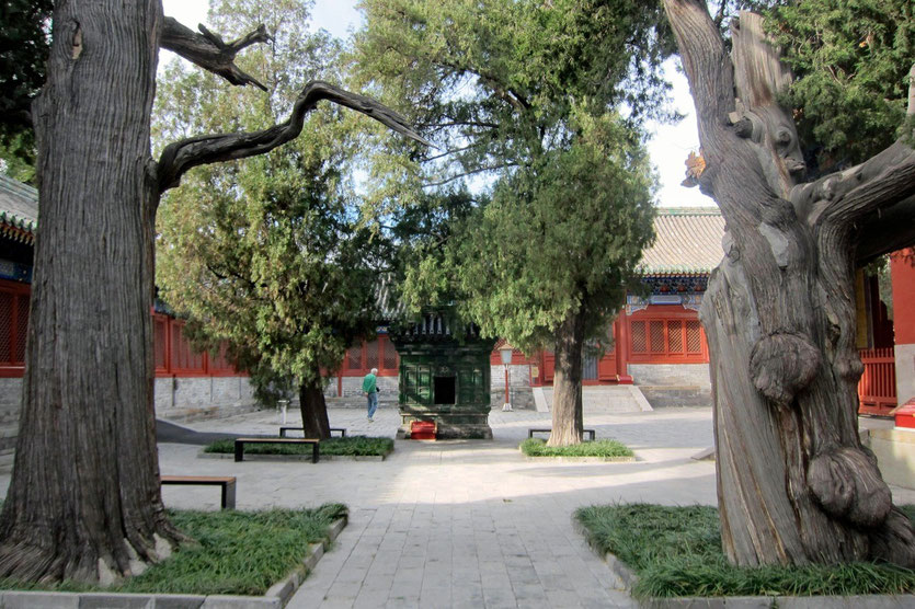 Konfuzius Tempel Peking