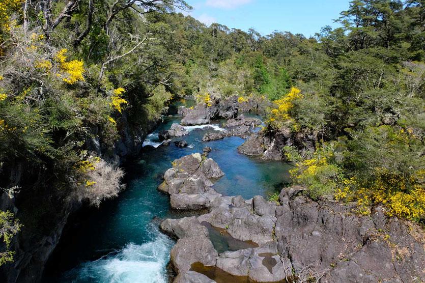 Rio Petrohué am Lago Todos