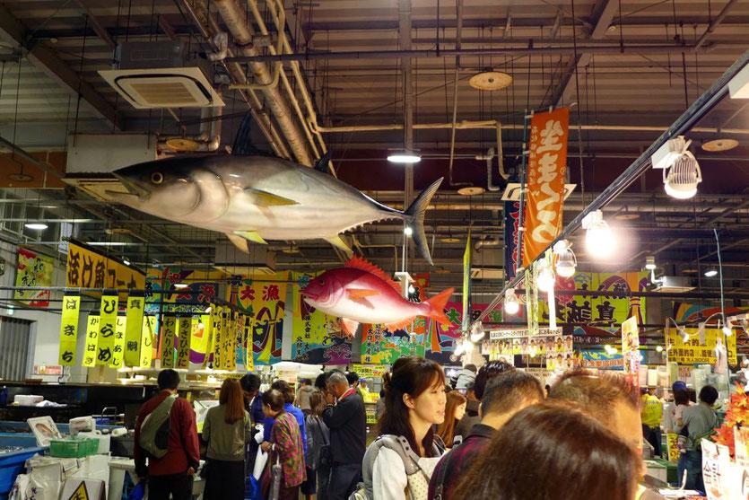 Tore Tore größter Seafood Fish market Shirahama Wakayama Japan