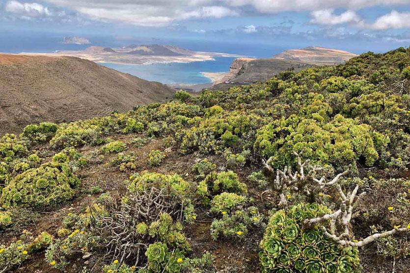 Los Helechos Vulkankrater Aussichtsreiche Wanderung Lanzarote Norden