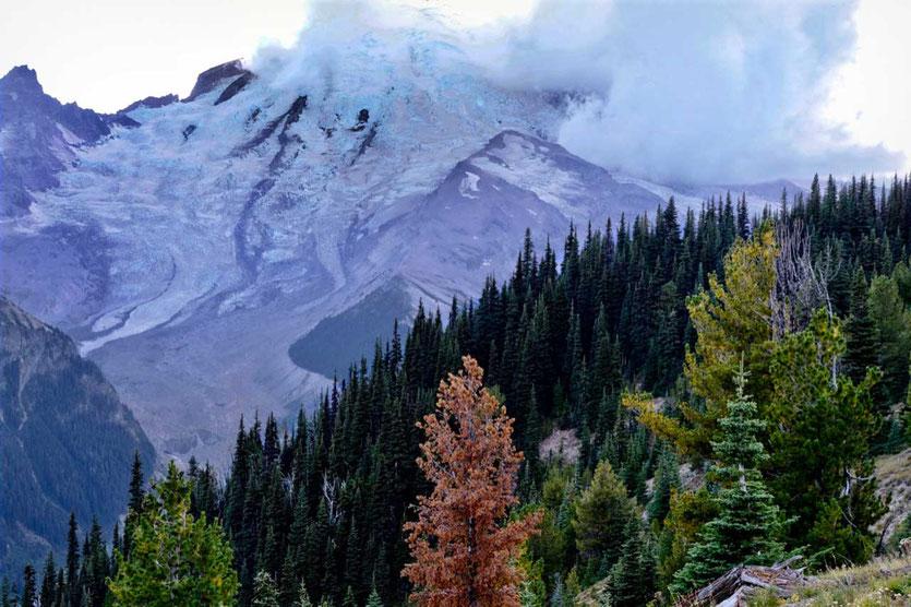 Sunrise Blick auf Emmons Gletscher, Mount Rainier NP