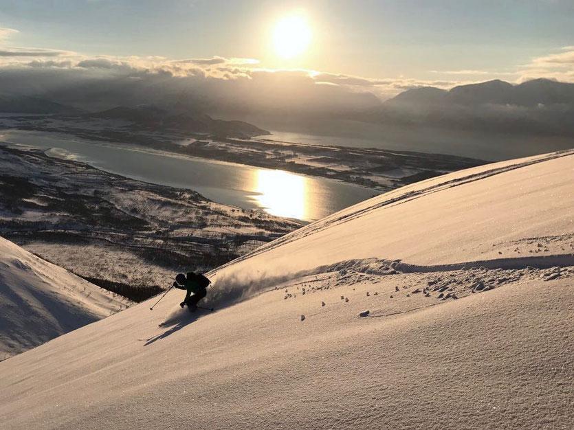 Aus diesem Material sind Skifahrerträume gemacht. Oliver zieht am Stetinden seine Spur in der Nachmittagssonne.     Foto: Stefan Brunner
