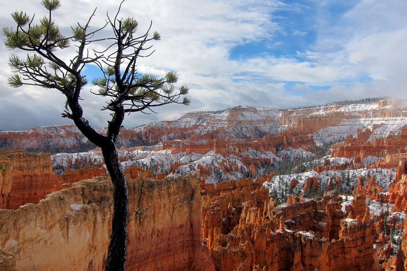 Bryce Canyon National Park Trail USA Südwesten