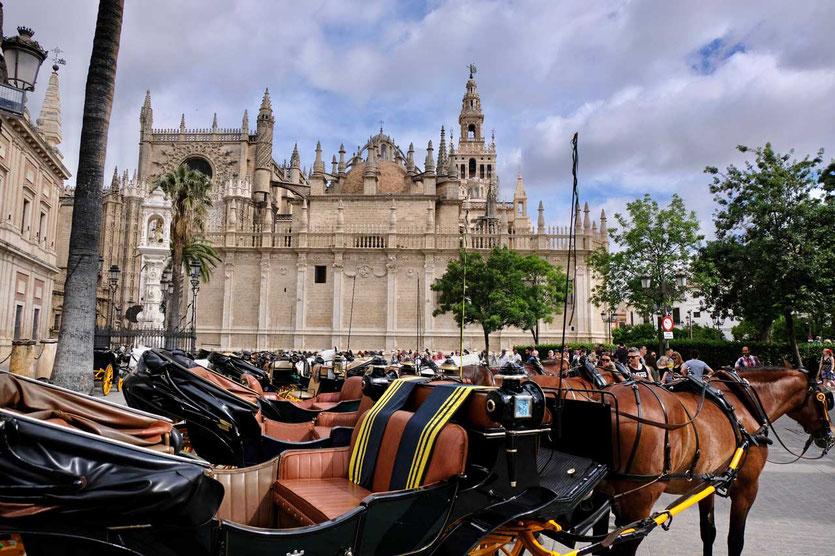 Pferdekutschen an der Kathedrale Sevilla