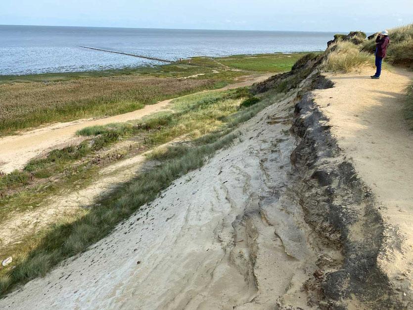 Morsum-Kliff Erdschichten Wanderung Sylt
