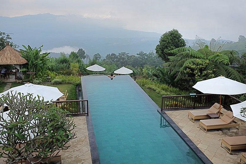 Bali Nord Hotel Tipp Infinity Pool