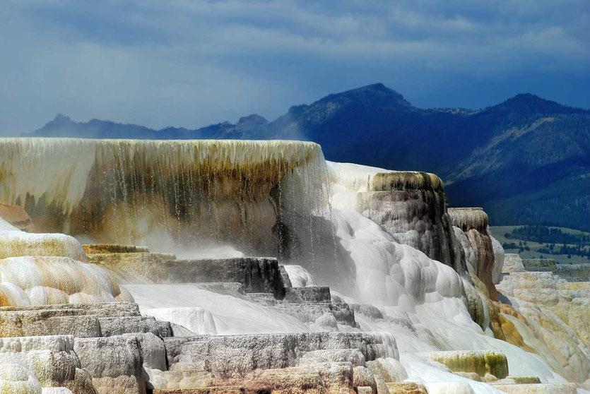 Mammoth Hot Springs Highlight im Norden Yellowstone Park