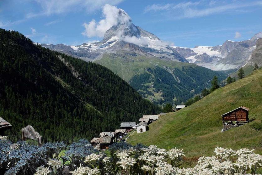 Zermatt Gourmetweg Weiler Findeln mit Matterhorn