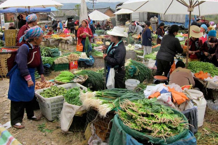 Dali Shaping Montagsmarkt