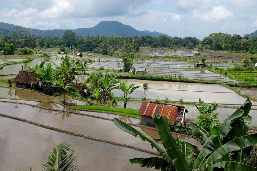 Sidemen tipps Bali