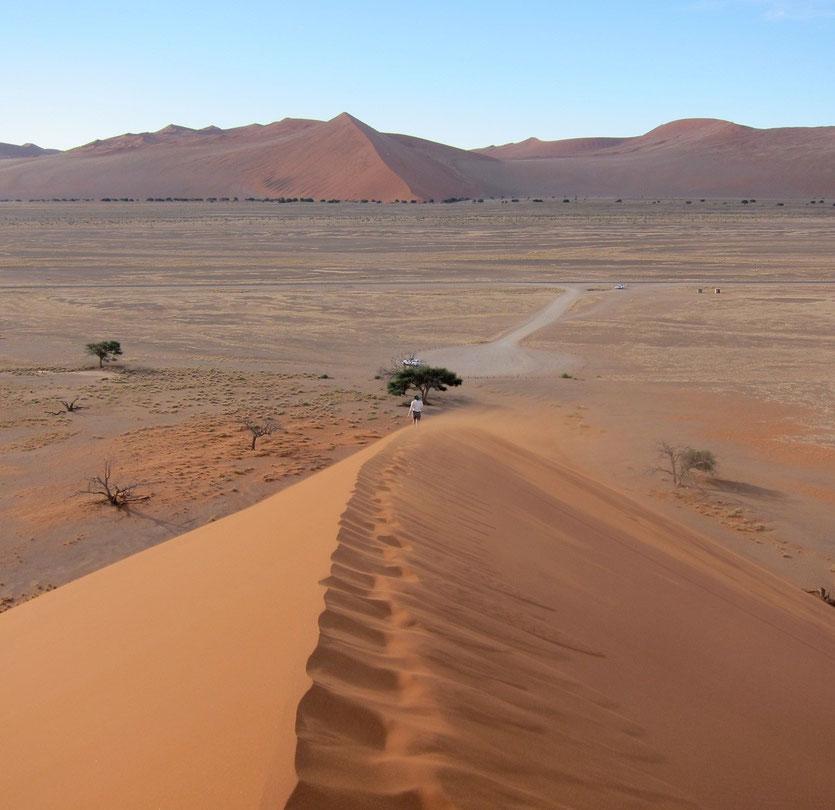 Sossuvlei Namibia, Abstieg von Düne 45
