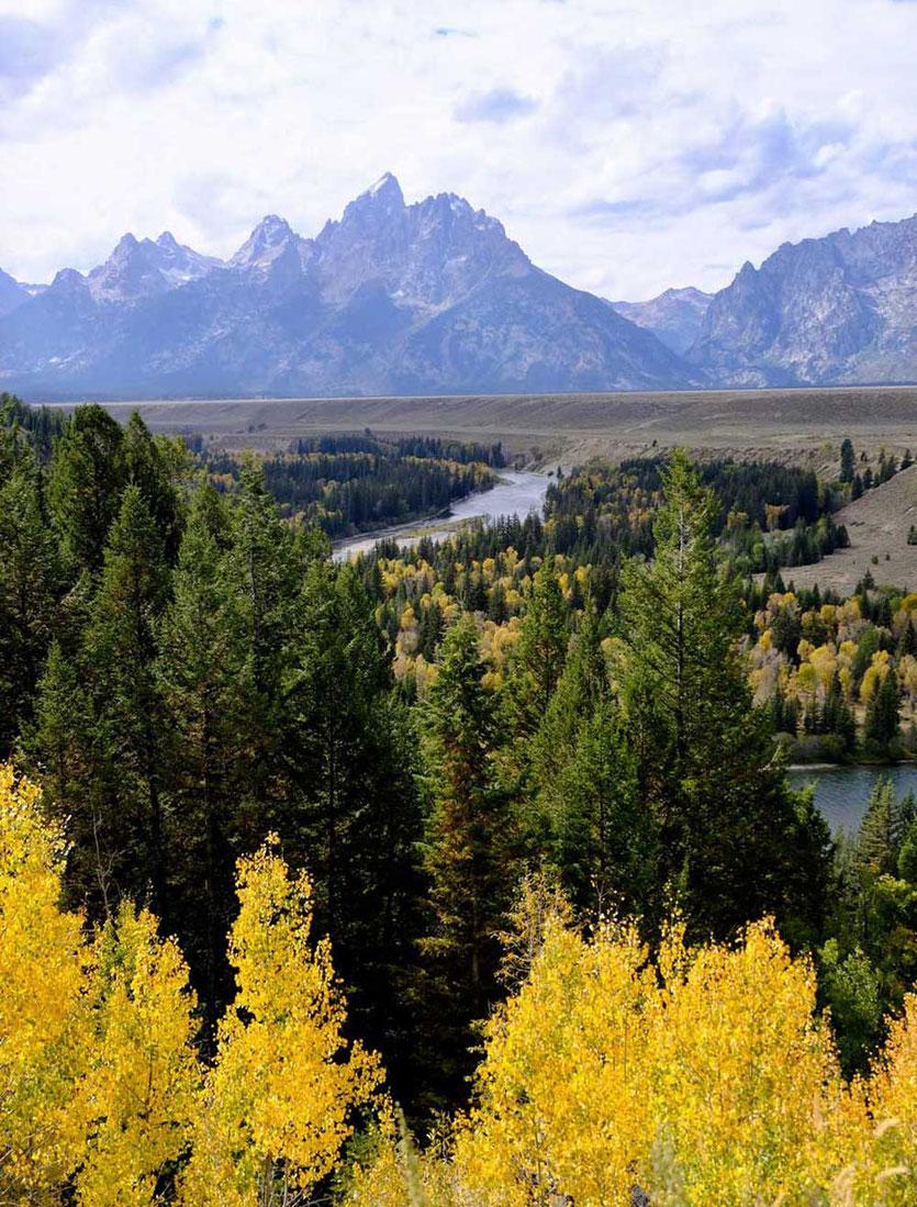 Snake River Overlook Grand Teton Herbst