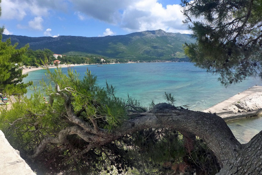 Beach Strand Orebic Peljesac Camping