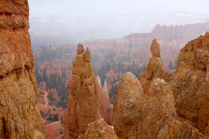 Bryce Canyon, Queens Garden + Navajo Look Trail