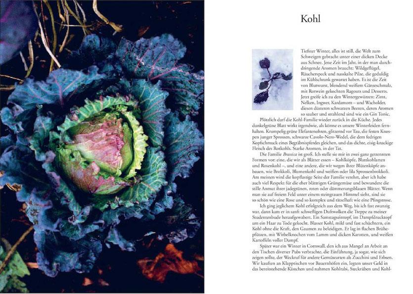 Kochbuch Nigel Slater Tender • Gemüse