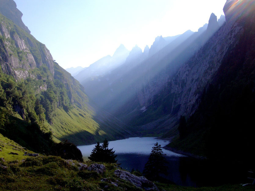 Bollenwees, Fählensee Appenzell