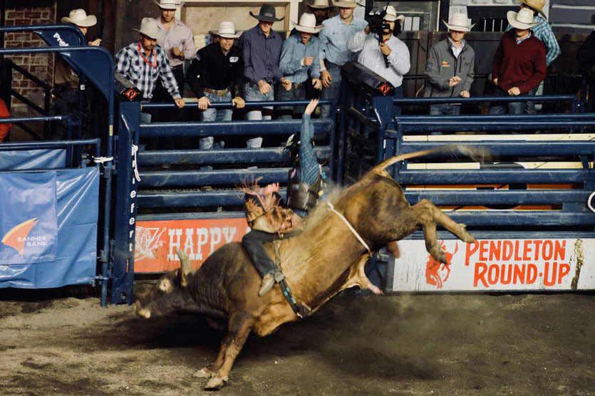 Professional Bull Riding im Happy Canyon Pendleton Round Up Oregon