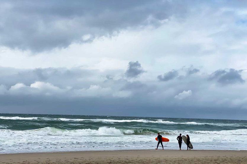 Sylt Surfer am Weststrand