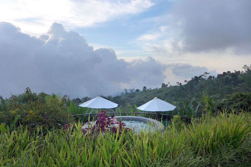Garden Jacuzzi Infinity pool north bali best highland resort
