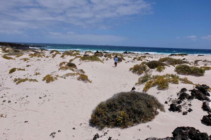 Caleta del Espiral Caletones Lanzarote North Beaches weiße Dünenstrände