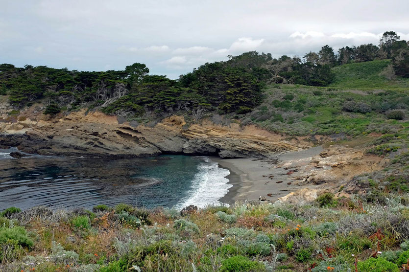 Point Lobos State Reserve, Monterey Peninsula
