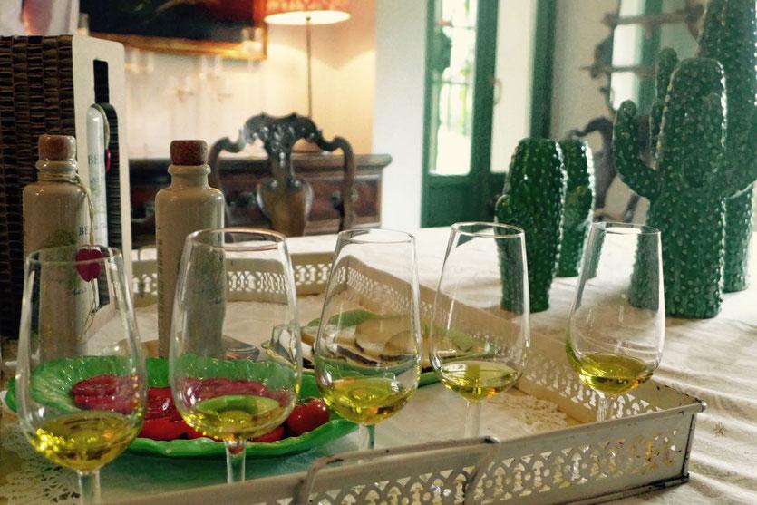 Belvís de Las Navas Bio Olivenöl aus Marbella
