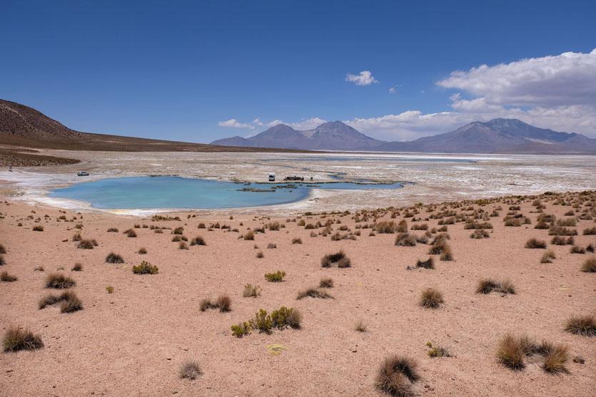 Termas de Polloquere heiße Quelle Salzsee Chile