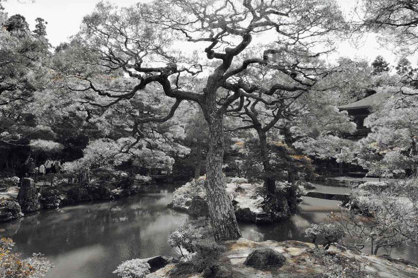 Kyotos schönste Tempeln Gärten Ginkakuji Silberner Pavillon
